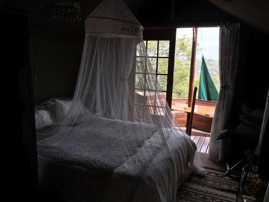 Teniqua Treetops: photo1.jpg