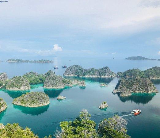 Picture of raja ampat biodiversity eco resort raja ampat tripadvisor - Raja ampat dive resort reviews ...