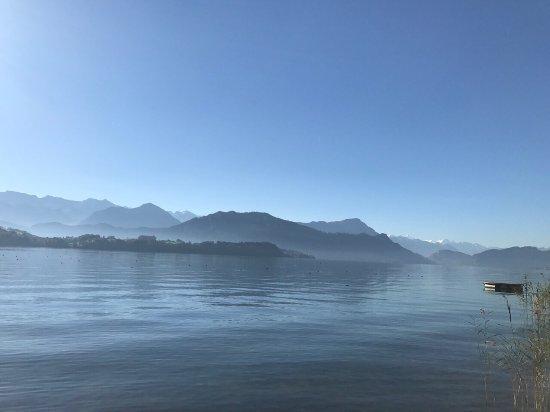 Merlischachen, Suiza: photo4.jpg