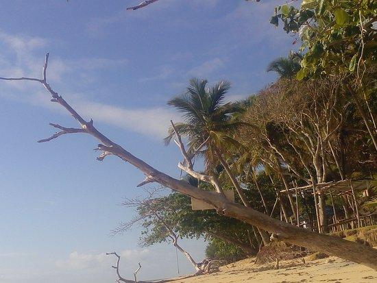 Praia do Satu: 20171015_075343_large.jpg