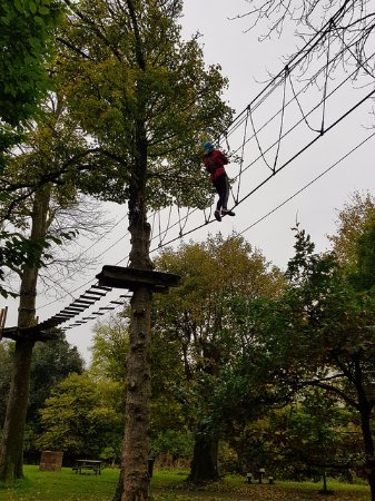 Castlecomer, Irlanda: tree top walking