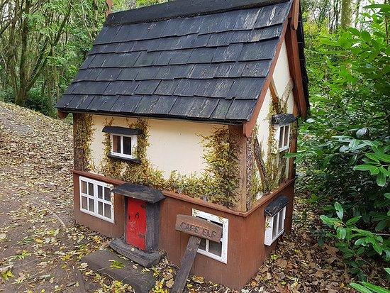 Castlecomer, Irlandia: the elf village