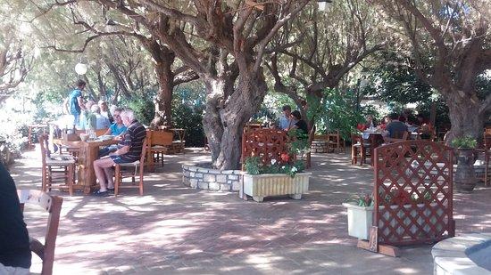 Plakias, Grecia: Domnoni taverna