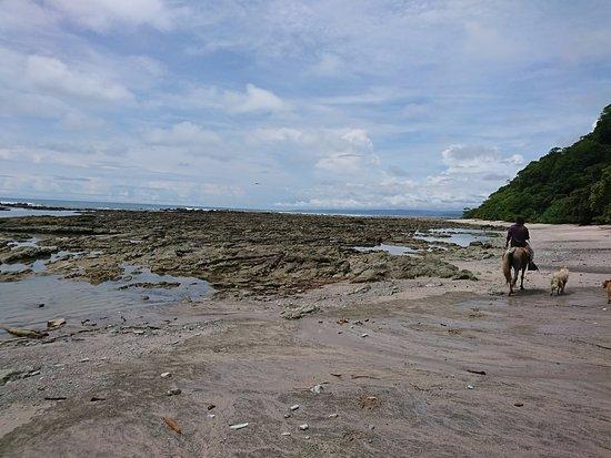Mal Pais, Kostaryka: Plages désertes