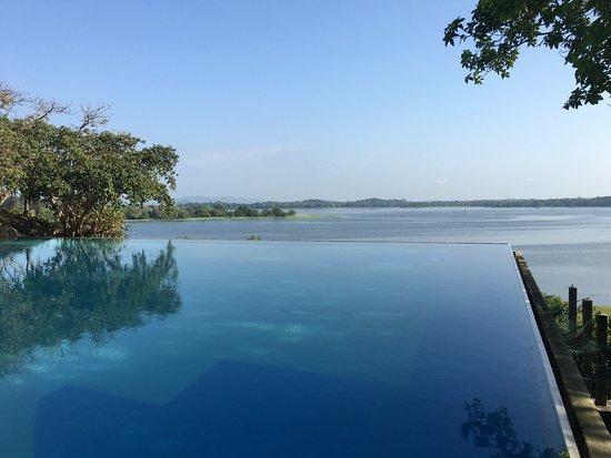 دامبولا, سريلانكا: Vistas desde la piscina