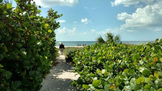 إيه بيتش ريتريت: Pathway to the beach. Taken from outside the room.