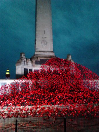 A Few Famous Ceramic Poppies From Tower Of London Currently - Ceramic memorial photos