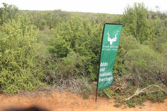 Addo Elephant National Park, Sudáfrica: parque de Addo
