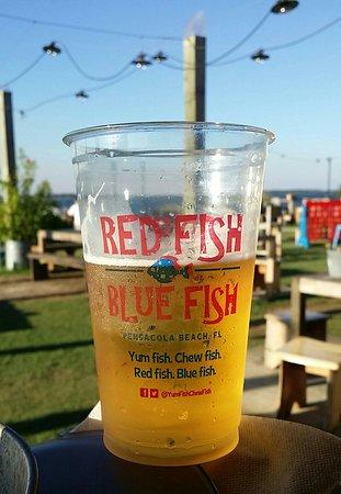 Red Fish Blue Fish: 20171017_165214-1_large.jpg