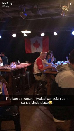Loose Moose: Typically Canadian