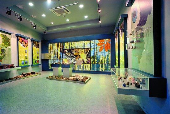 Μουσείο Φυσικής Ιστορίας Αλεξανδρούπολης