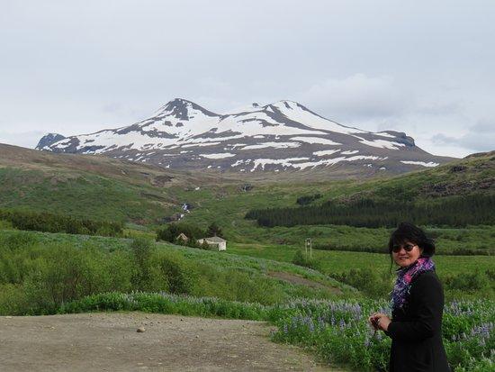 Akranes, Islandia: Glymur Mountain