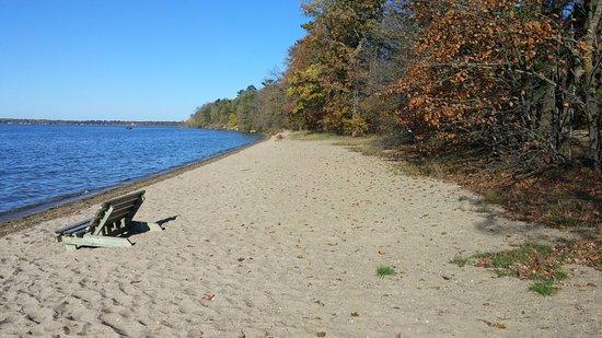 Bemidji, MN: Swimming beach
