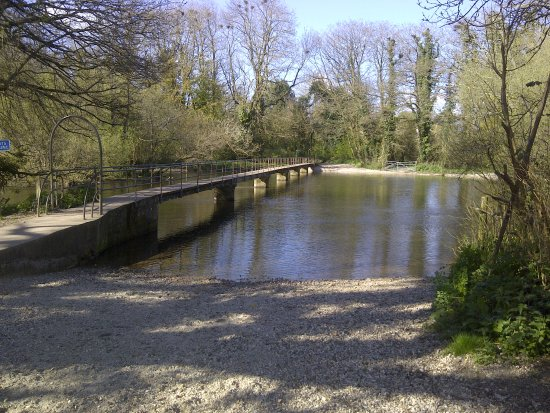 foot bridge over the river Frome, Moreton just 100 meters from our front door !