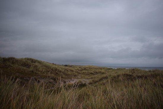 Albaek, الدنمارك: En kort gåtur