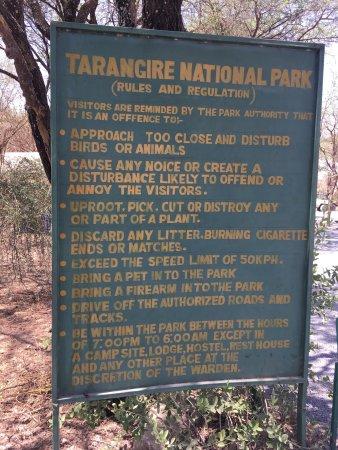 Tarangire National Park, Tanzania: photo9.jpg