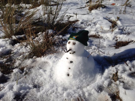 Elgin, Sudáfrica: Snow on the walk in