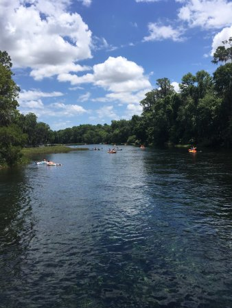 Dunnellon, FL: Rainbow River