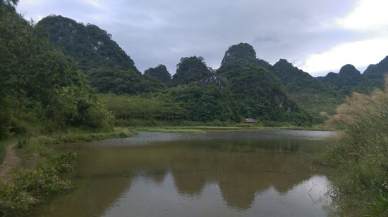 Yingde, Kina: pond reflections