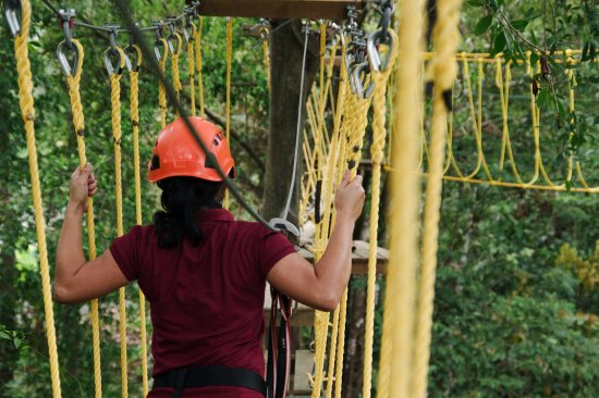 Dominical, Costa Rica: The Monkey Challenge  has been described as exhilarating,scary,fun,exciting and challenging.