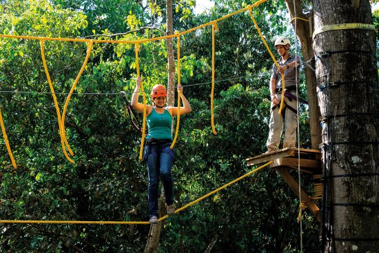 Dominical, Costa Rica: Monkey Challenge