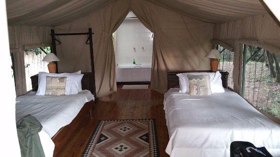 Sekenani Camp Picture