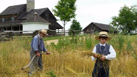 Staunton, VA: Harvest time in 1850's America