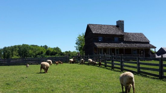 Staunton, VA: The 1850's American Farm - Just one of many living history exhibits at the Frontier Culture Muse