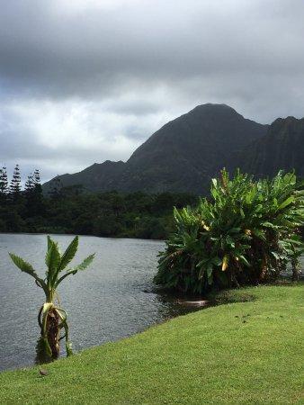 Hoomaluhia Botanical Gardens: photo0.jpg