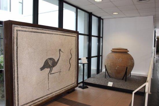 Boscoreale, Italia: Museu com peças retiradas das ruínas