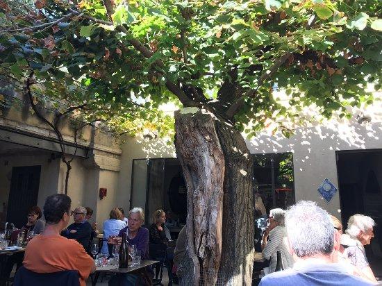 Carpentras, Fransa: la terrasse