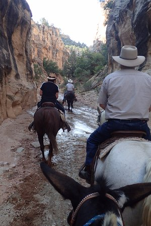 Mecham Outfitters: Willis Creek and the slots