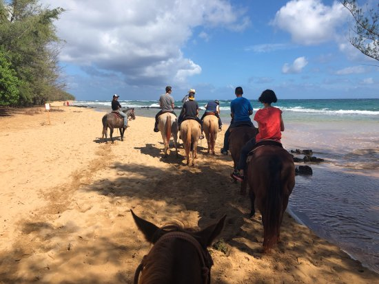Koloa, HI: Horseback riding on beach