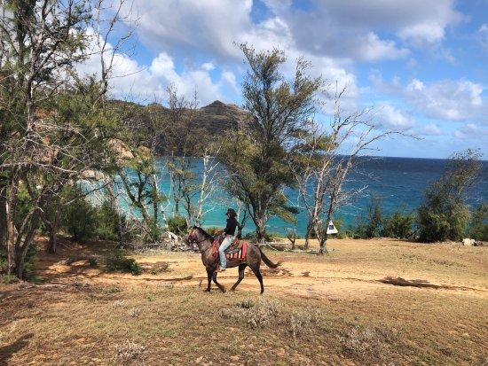 Koloa, Hawaï : amazing view