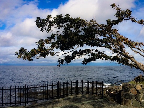Nanaimo, Canadá: Watch marine life from Neck Point Park.