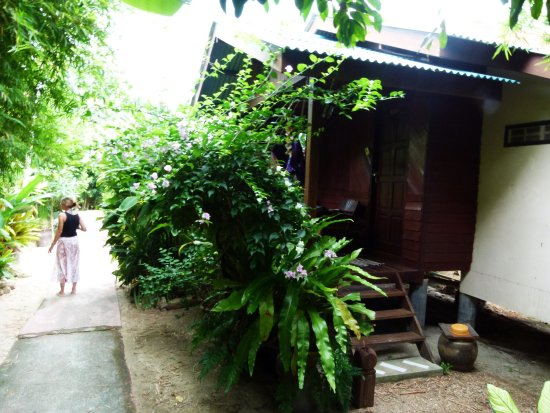 Dolphin Bungalows: photo0.jpg