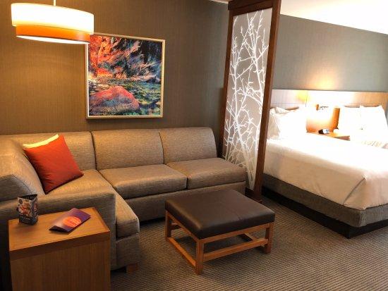 Cozy Corner (sofa sleeper) in each room. - Picture of Hyatt Place St ...