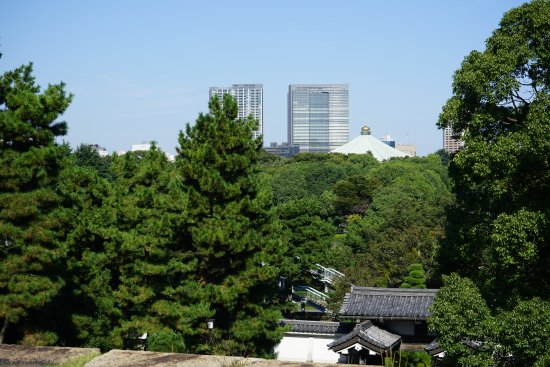 The East Gardens of the Imperial Palace (Edo Castle Ruin): La ciudad desde los restos de la torre.