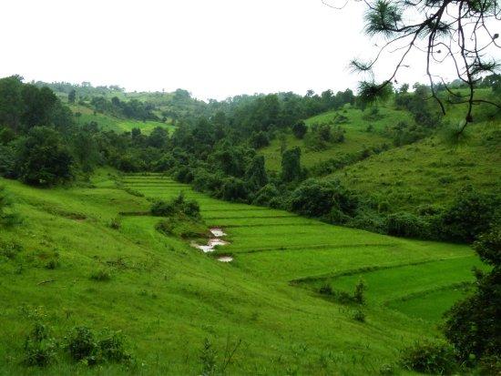Kalaw, Myanmar: photo1.jpg