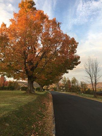 Sugar Hill, NH: photo0.jpg