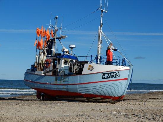 Bilde fra Thorup Strand