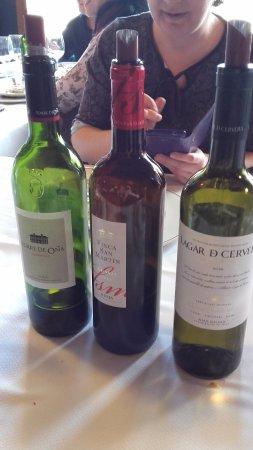 Laguardia, Spagna: Los vinos en cuestión