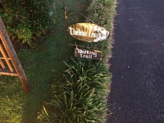 Mayberry Motor Inn Photo