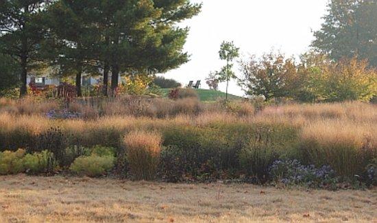 Blacksburg, VA: The Hahn Meadow Garden is our newest garden feature.