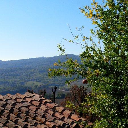 Casole d'Elsa, Italy: vista di una collina