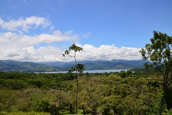 Lake Arenal: View toward the lake from Arenal Trail 1968