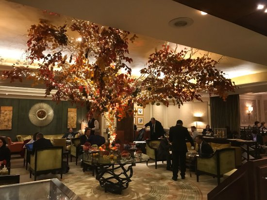 Jumeirah Carlton Tower: Autumn colors