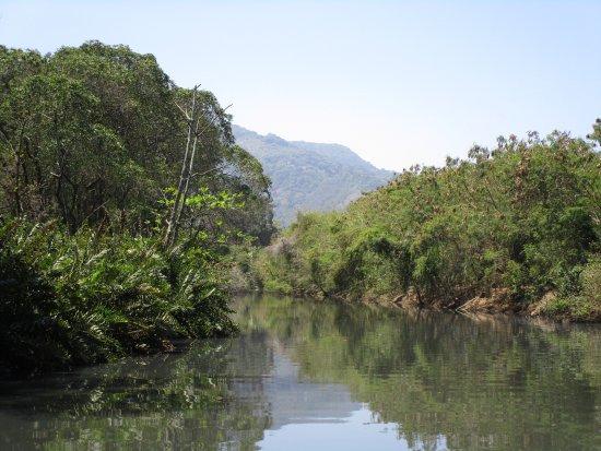Rafael Torres Lopes Tour Guide : The Wetlands