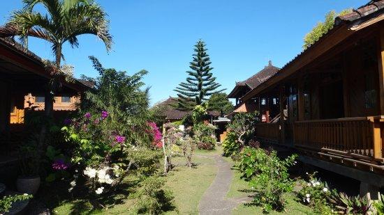 Munduk, Indonesia: Le jardin luxuriant.