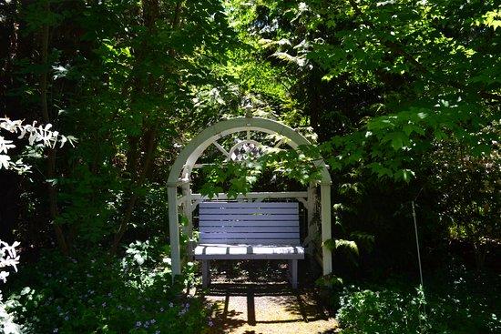 Cottage Grove Bild